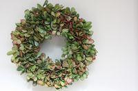 Elise Blaha :: enJOY it.: jade plant succulent wreath.