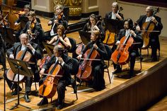 Violoncelistas da OSB no Theatro Municipal do RJ. Foto: Cicero Rodrigues