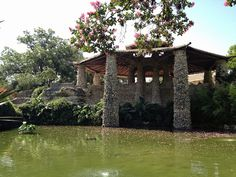 Must See San Antonio | Japanese Tea Garden #satx