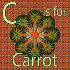C is for Carrot. Carrot Mandala. Fruit & Vegetables A to Z. Teaching resources & notecards that I am making from my library of fruit and veg prints made from Smy food photography.  #instagood #instafood #atoz #alphabet #abc #print #pattern #printmaking #photoshop #food #art #design #crosssection #foodart #foodartist #carrot #mandala #tutor #workshop #course #healthyfood #healhy #healthyeating #fruitandveg #rootvegetables #smygoodness #smygoodnessprints #vegetarian #vegan…
