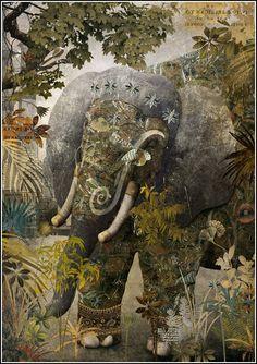 """windypoplarsroom:  Gabriel Pacheco """"El libro de la Selva"""""""