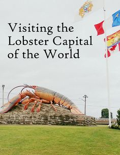 Want to get your photo taken with the world's largest lobster? Head to Shediac, New Brunswick, in Atlantic Canada, for all things lobster. Canada Destinations, Canadian Travel, Atlantic Canada, Parks Canada, Newfoundland And Labrador, New Brunswick, Travel Around The World, Travel Usa