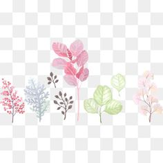 Cartoon Plants,Hand-painted leaves,Watercolor leaves,Colorful flowers,cartoon vector,color vector,hand-painted vector,watercolor vector,flowers vector,leaves vector