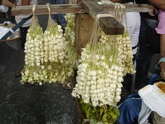 Sampaguita National Flower of Philippines selling in a sidewalk at Quiapo Church. by jm_letada17, via Flickr