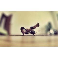 #BalanceAlliance @cyogalab day1 #ashtavacrasana #asana #yogadailypractice #iambeautiful #yogafun #yoga365 #yogalife #yogalove #yoga #yogaaddict #iloveyoga #igyoga #yogachallenge   ) in #yoga in phlow