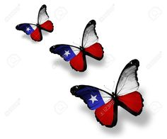 Related image Chilean Flag, Image