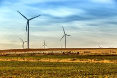 Windmills in western Oklahoma. Source- onlyinyourstate.com