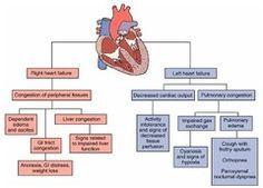 L/R heart failure
