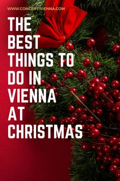 Looking for things to do in Vienna in winter? Tap this pin to discover the most magical things to do in Vienna at Christmas! Travel Around Europe, Places In Europe, Magical Christmas, Christmas And New Year, Amazing Places, Beautiful Places, Stuff To Do, Things To Do, Austria Travel