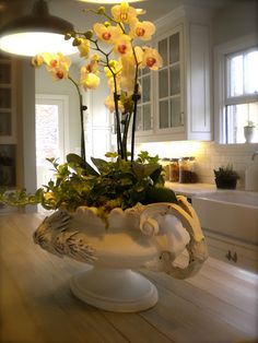 Use old urns to display plants!