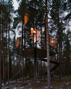 The magical allure of a #treehouse. Here Mirrorcube Tree #Hotel designed by Tham & Videgård Arkitekter Harads #Sweden.  Åke E:son Lindman. For more #lifeinthewoods check the beautiful TREE HOUSES available in the book store of your choice or online at taschen.com