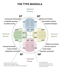 The Myers-Briggs Type Indicator (R) or MBTI (R) is a fascinating way to get to know your personality better. I assess and facilitate this assessment for people regularly and I always learn something new about myself each time. Personality Psychology, Infj Personality, Myers Briggs Personality Types, Myers Briggs Personalities, Entj, Emotional Intelligence, Archetypes, Introvert, Assessment