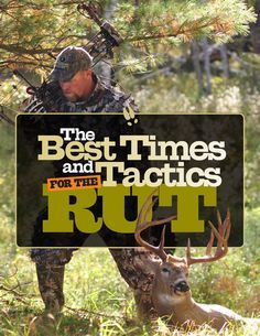 Most hunters know the rut is an important time to be in the woods, but do you truly understand how to hunt during deer hunting's primetime?
