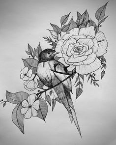 Dream Catcher, Draw, Bird, Tattoos, Dreamcatchers, Tatuajes, To Draw, Birds, Tattoo