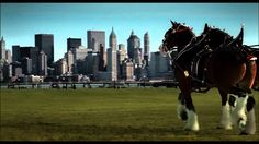 """""""We'll Never Forget"""" - Budweiser September 11th Tenth Anniversary Commer..."""