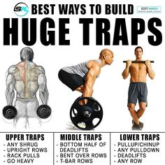 Build Bigger Huge Traps with the best BULKING STACK that comes with a combination of 4 Legal Steroids that do not have any side effects, best bulking stack, bulking supplements, legal steroids Weight Training Workouts, Training Plan, Gym Workouts, Huge Traps, Traps Muscle, Upper Traps, Traps Workout, Increase Muscle Mass, Big Muscles