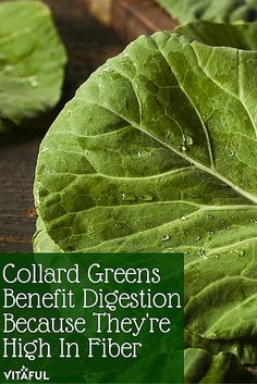 Food Facts: Collard Greens Benefit Digestion Because They're High In Fiber | Natural Remedies | Holistic |