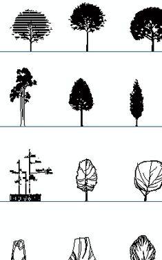 trees elevation 2 cad blocks