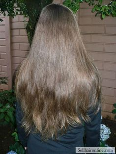 Nice Virgin Medium Brown  Hair with Natural Golden Highlights-20+ Inches-
