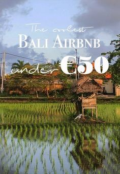 Looking for an alternative to a hotel in Bali? Here are some of my favorite Bali airbnb for all tastes and under € Popular Honeymoon Destinations, Honeymoon On A Budget, Bali Honeymoon, Romantic Honeymoon, Romantic Places, Romantic Vacations, Romantic Travel, Bali Accommodation, Bali Travel Guide