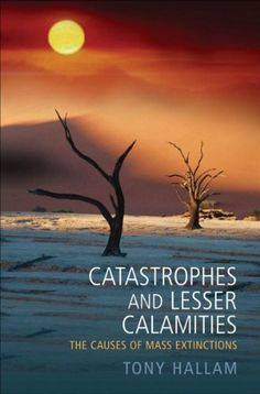 Catastrophes and Lesser Calamities: The causes of mass extinctions by Tony Hallam, http://www.amazon.com/dp/B003FBTXL8/ref=cm_sw_r_pi_dp_gaJQsb114WC3M