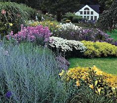 i want my garden to look like this garden at white flower farm.