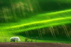 Idyllic Photographs of the Tuscan and Moravian Landscapes by Marcin Sobas