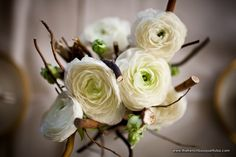 Table Centerpieces, love the pop of green with the white ranaculus and branches. #CleverFlowers