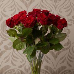 Eigentlich gibt es in Liebesdingen kaum eine schönere Sprache als die, der roten Rosen. Rot als Farbe der Liebe, zeigt dem Partner unmissverständlich, dass hier echte Gefühle im Spiel sind.