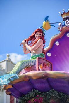 The Little Mermaid ariel Ariel Disney World, Disney Nerd, Disney World Resorts, Disney Dream, Disney Princesses, Disney Love, Disney Magic, Disney Pics, Disney Pictures