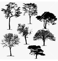 Tree silhouettes collection vector on VectorStock&reg