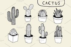 8 Hand Drawn Cactus Clip Art  @graphicsmag
