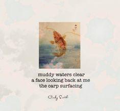 haiku~muddy waters Cindy Smith