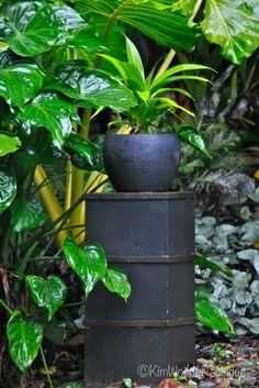 'Tabu' garden by Mark Vowles.