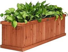New Giantex Raised Garden Bed Flower  Vegetable Planter Window Mounted Plant Box  Garden, Yard Wood Box  Planting (40 LX12 WX12 H) online - Wouldtopshopping#bed #box #flower #garden #giantex #lx12 #mounted #online #plant #planter #planting #raised #vegetable #window #wood #wouldtopshopping #wx12 #yard Garden Planter Boxes, Wooden Garden Planters, Wood Planter Box, Decorative Planters, Box Garden, Concrete Garden, Outdoor Flower Planters, Outdoor Flowers, Flower Pots