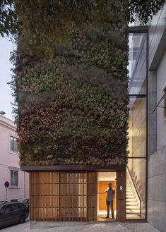 House in Lisbon with green walls