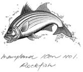 Rockfish.jpg sketches on the icons of maryland wine for boordy