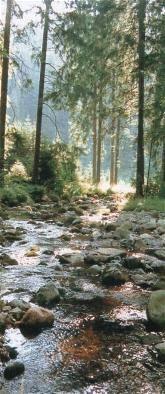 Wandern - Sieber im Harz April 2014