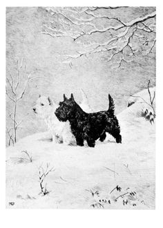 Kirmse Scottie and Westie Dog Snow Scene Holiday Christmas Cards Note Card s