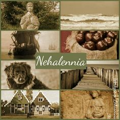 Nehalennia Protector of the dutch and goddess of the lowlands.  https://www.facebook.com/thelokasenna/photos/a.488869287897376.1073741844.483546771762961/617374701713500/