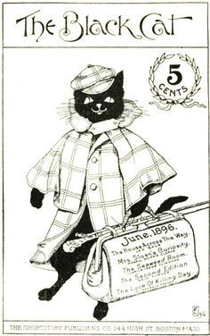 Image result for The Black Cat Book by Charles Robinson