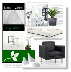 """black + white + green"" by tiffanysblues ❤ liked on Polyvore featuring interior, interiors, interior design, home, home decor, interior decorating, Cassina and Laura Ashley"