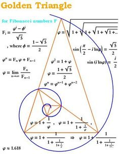 The Golden Ratio in a Spiral and Triangle (Fibonacci Numbers, Geometry) Golden Ration, Divine Proportion, Math Art, Science Art, E Mc2, Golden Triangle, Calculus, Spirituality, Knowledge