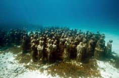 Grenada Underwater Sculpture Park.