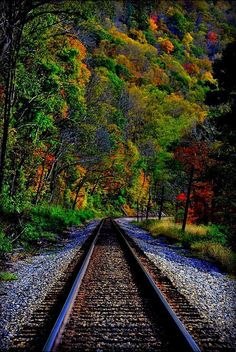 """""""New River Gorge Railroad Tracks"""" Photo By Joy Runyon. Source flickr.com"""