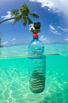 Turn your old plastic bottles into actioncam tripods with the SP Gadgets Bottle Mount - probably the coolest, yet easiest way to recycle your PET bottle! Check out our SP Gadgets online! #bluetomato #recycle #spgadgets Other Cool Things for Pets: http://www.damniwantit.net/category/pets/