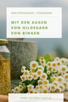 """""""Eure Lebensmittel seien Eure Medizin und Eure Medizin seien Eure Lebensmittel."""" Was meinte Hildegard von Bingen mit diesem Zitat? In diesem Seminar lernen wir Hildegard näher kennen: Ihr Leben, ihre freudvolle Art mit Glauben, Heilung und Ernährung  umzugehen, sowie ihre Lebenseinstellung. Kraut, Vegetables, Yoga, Spices And Herbs, Medicinal Plants, Healing, Quote, Remedies, Medical"""