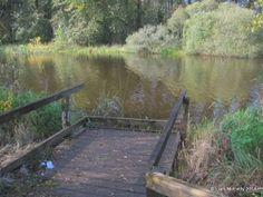 River Suck, Co Roscommon, Ireland Roscommon Ireland, Coarse Fishing, Fishing Adventure, Garden Bridge, Outdoor Structures, River, Rivers