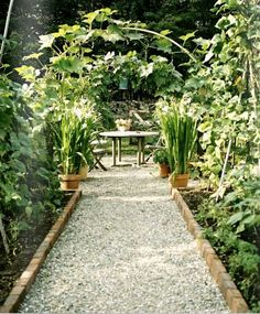 Pea Gravel with brick beds. Love the look and sound of pea gravel.