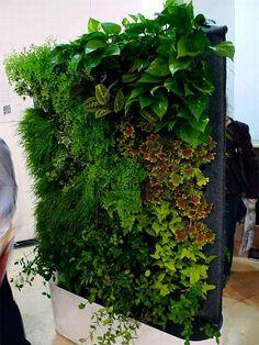 stukje groene muur binnen